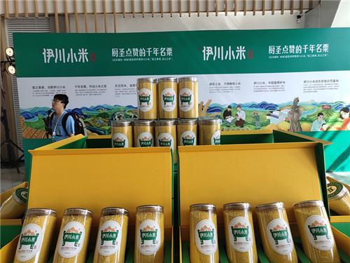 河南伊川小米:打造中国富硒小米产业第一县